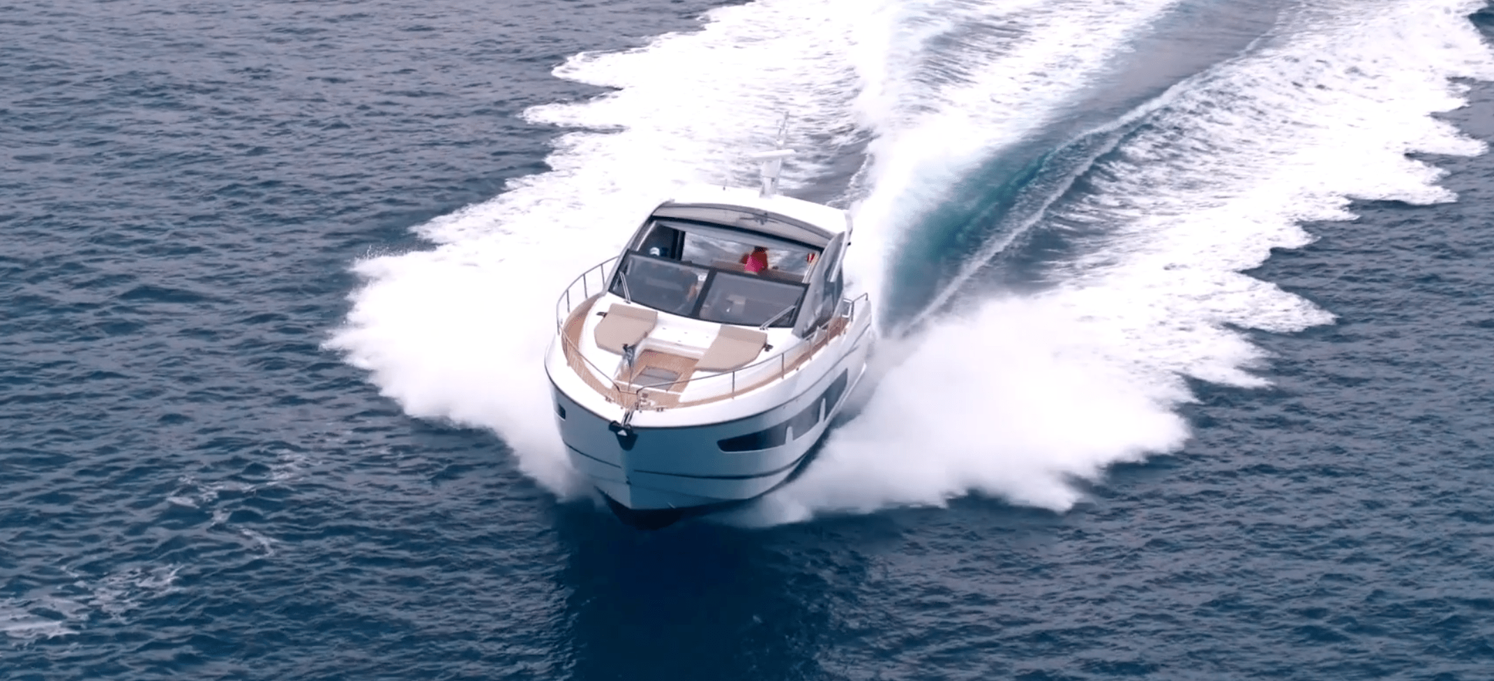 Sunseeker Growing Strong